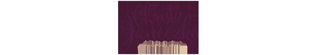 Romantic Eau Claire Wisconsin Wedding Photography by Christy Janeczko Photography logo